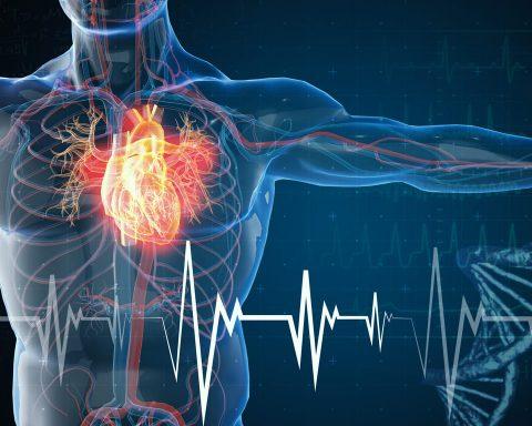 7 Penyakit Yang Menyerang Peredaran Darah Dengan Resiko Kematian Tinggi